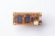 2020-08-03T01:32:19.254Z-orangeCrab-5.jpg