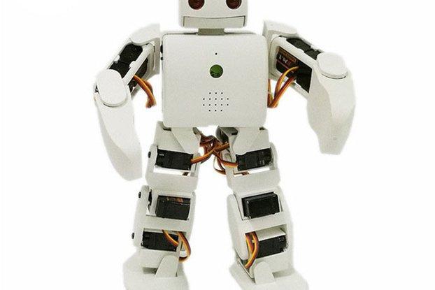 18dof Humanoid Robot Kit