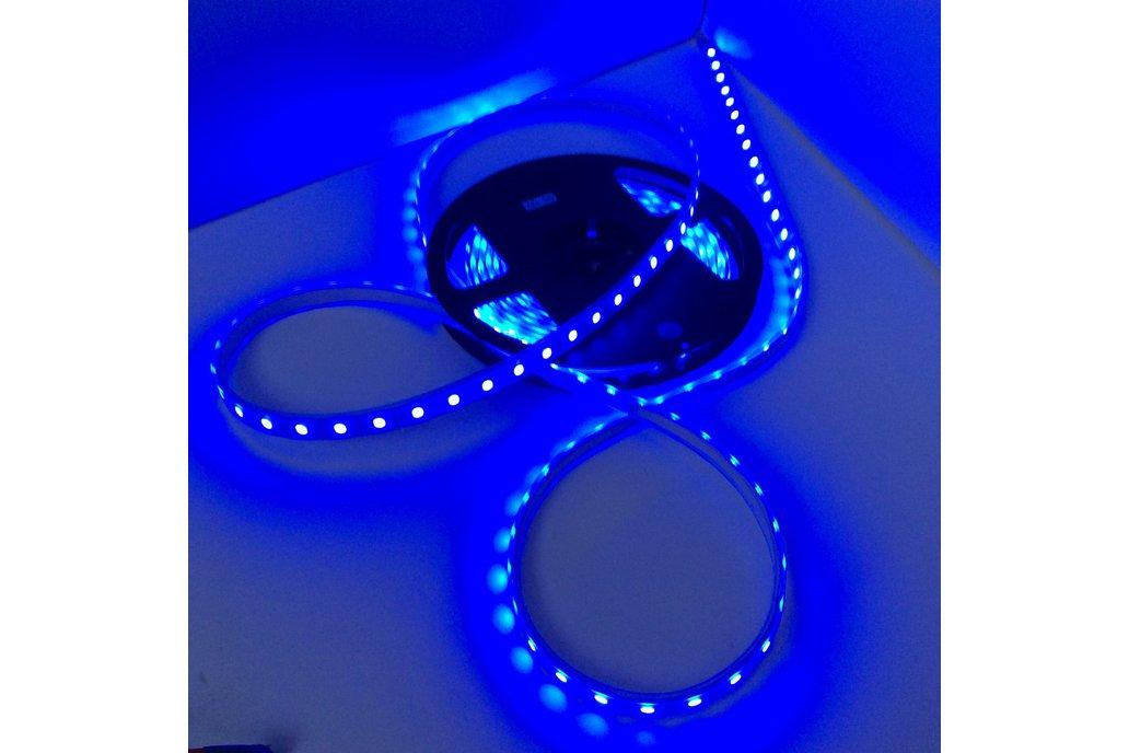 5M LED Strips 1