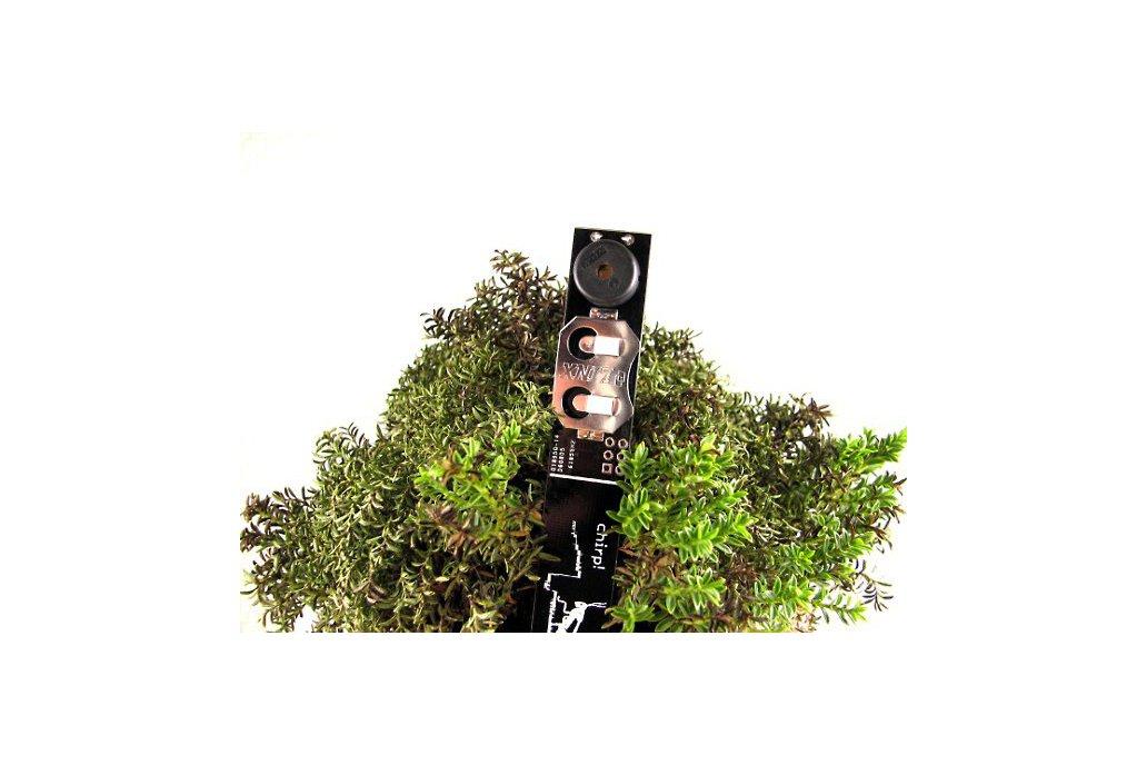 Chirp! - plant watering alarm 1