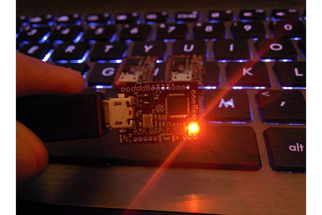 FemtoUSB (Atmel ARM Cortex M0+) 5