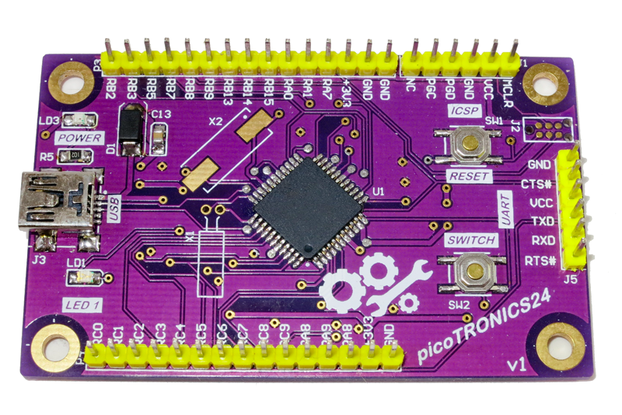 picoTRONICS24 Development Board/Kit