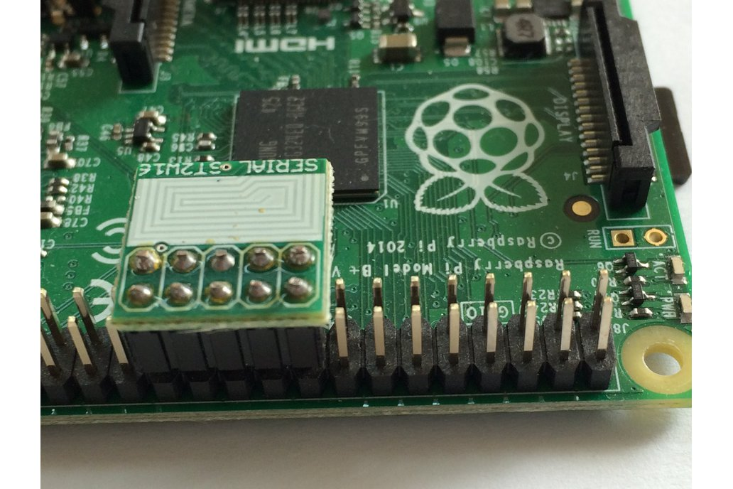 Software Serial Protection for Raspberry Pi 1