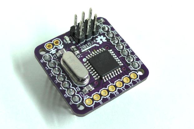 """RedBitOne 1"""" micro Dev board"""