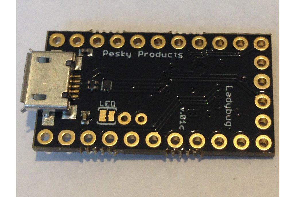 Ladybug STM32L432 Development Board 2