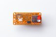 2020-08-03T01:32:19.254Z-orangeCrab-4.jpg