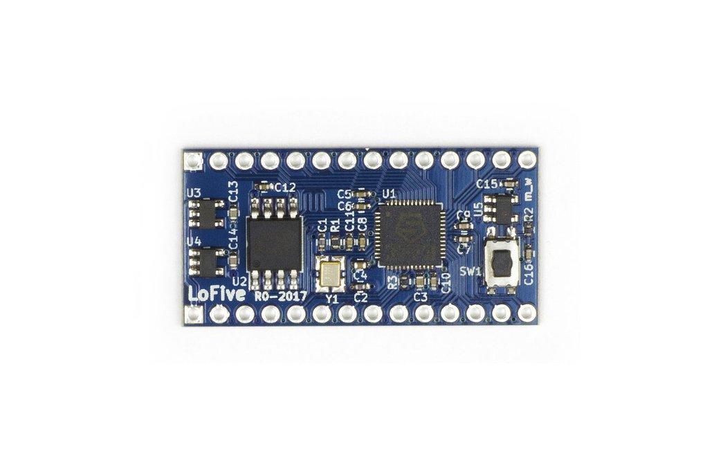 LoFive RISC-V 1