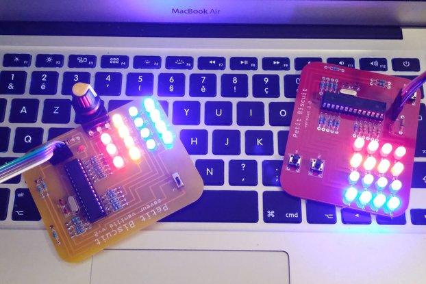 Petit Biscuit - Arduino Programming