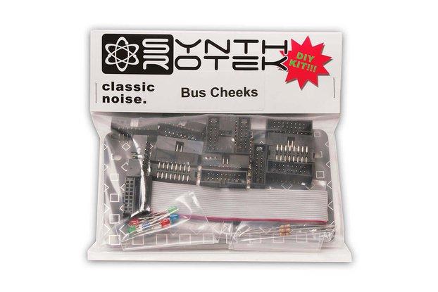 Bus Cheeks DIY Kit