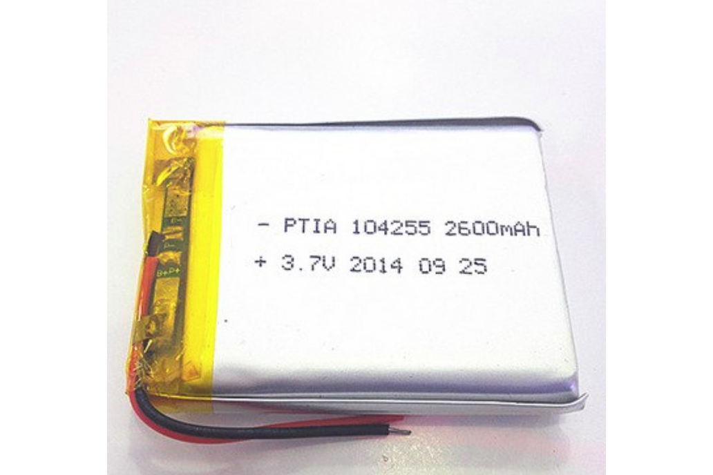 2600 mAh protected Li-Po battery 1