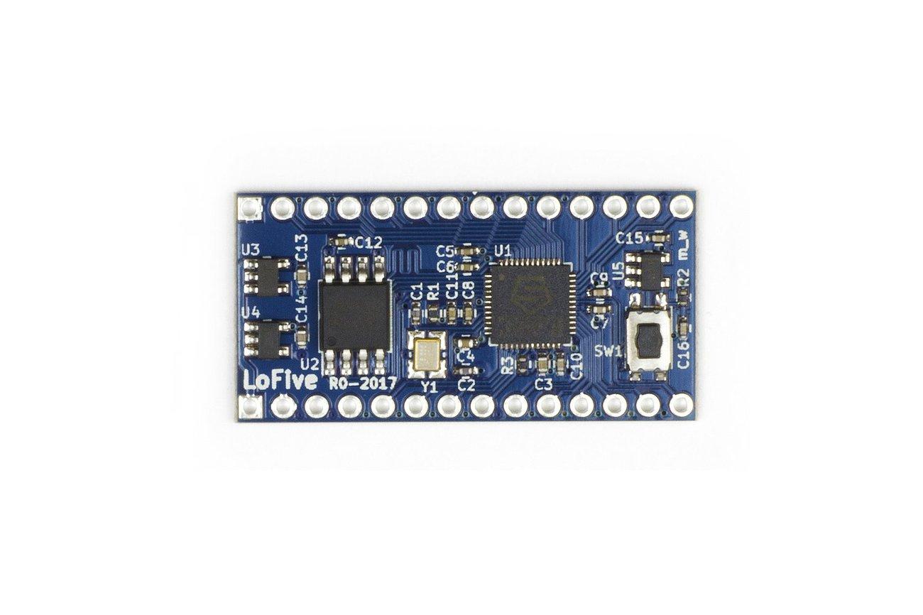 LoFive RISC-V
