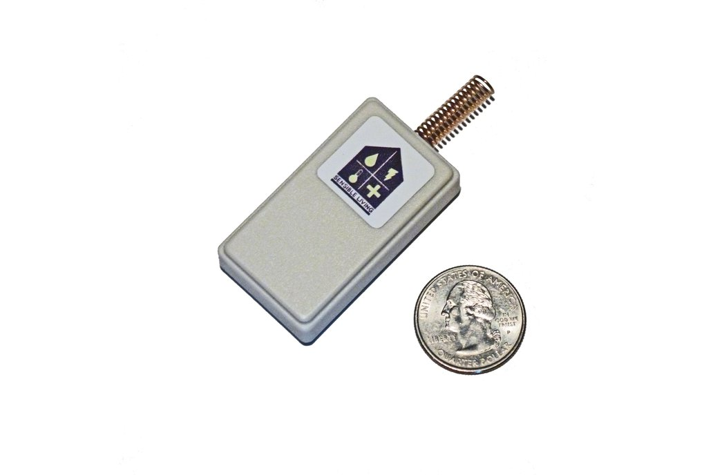 Mini-Temperature Sensor 1