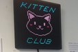 2014-06-28T07:08:57.660Z-kitten_club.JPG
