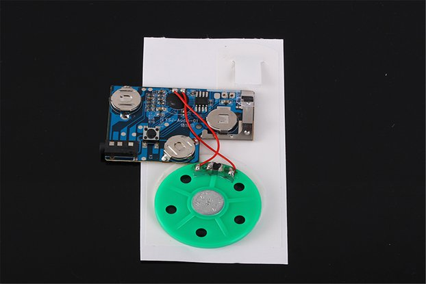 120S Greeting Card Recordable Voice Module (13420)