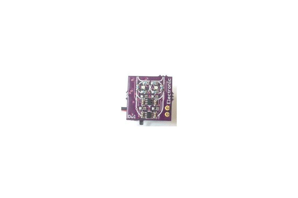 Electronic Owl 1