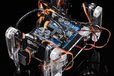 2015-06-17T10:00:50.959Z-MG_9006.jpg