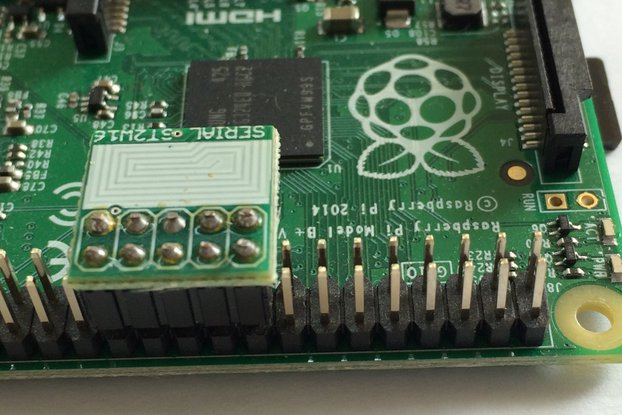 Software Serial Protection for Raspberry Pi