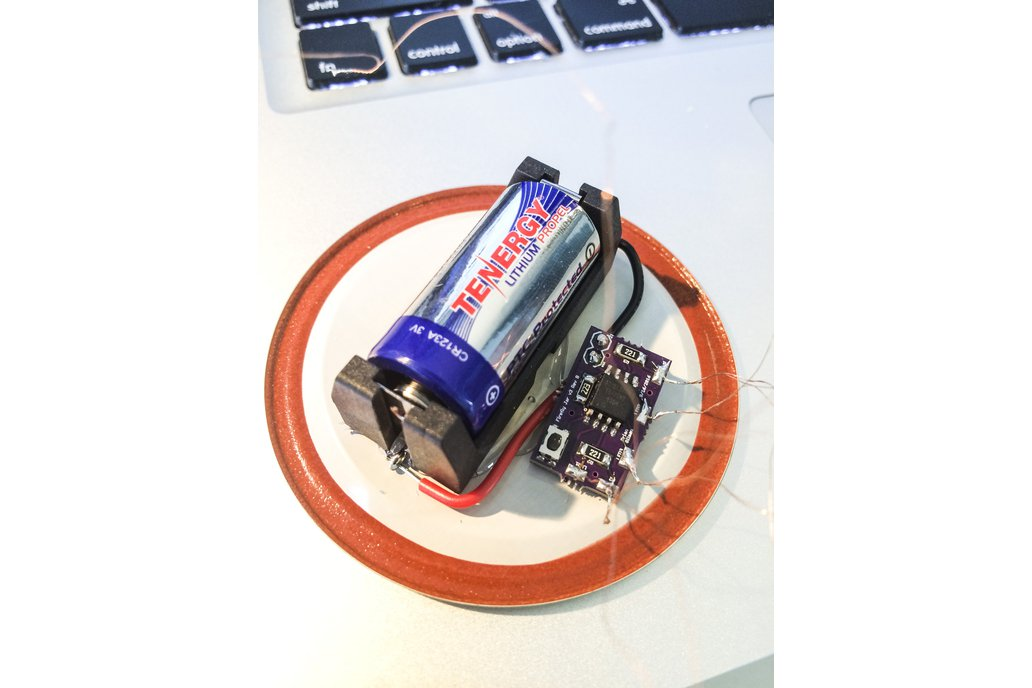 FireFly Jar Kit or Fully Assembled 1