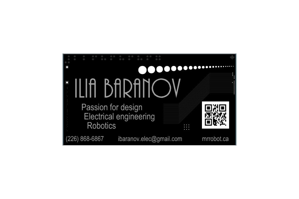 10x Custom PCB Business Card 2