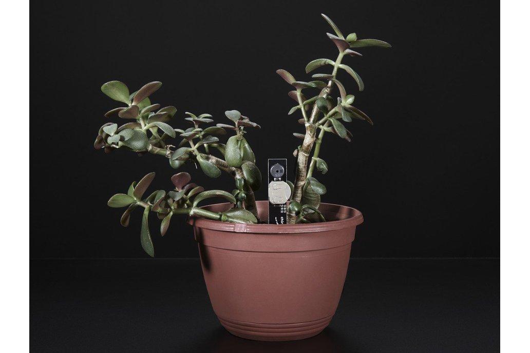 Plant Watering Alerter Soil Sensor(8861) 1