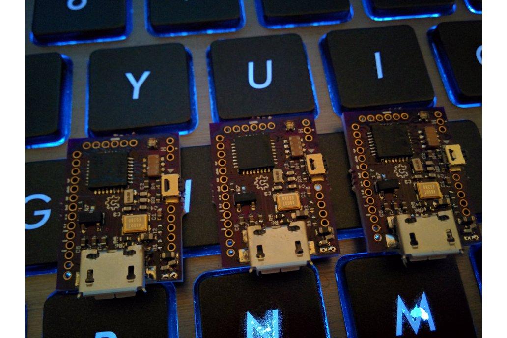FemtoUSB (Atmel ARM Cortex M0+) 2