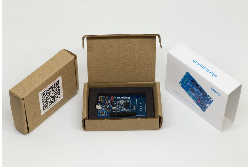 Bluey nRF52832 BLE development board 2