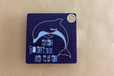 2020-02-13T18:30:33.898Z-dolphin1.png