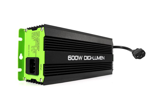 600W Horticulture Electronic Watt Dimmable Digital